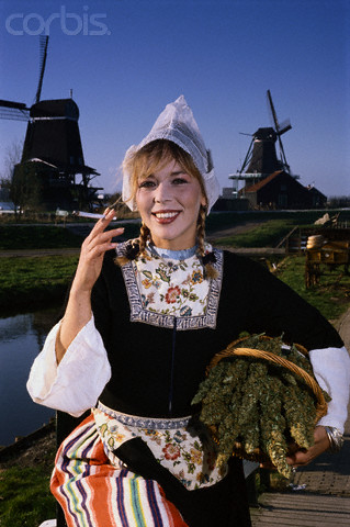 Blond dutch woman in traditional dress with a basket of weed and windmills in the background
